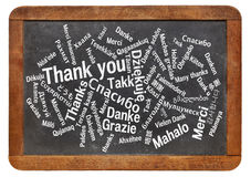 Thank you word cloud. Thank you in different languages - word cloud on a vintage slate blackboard royalty free stock photography