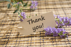 Thank you. Word written on a Looking card on mat royalty free stock image