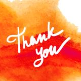 Thank you writing vector illustration