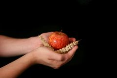 Thankful. Palms with apple and cereals isolated on black Royalty Free Stock Photo
