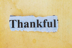 Thankful Royalty Free Stock Photo