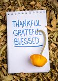 Thankful, grateful, blessed spiritual words. Handwriting in an art sketchbook with oranmental gourd against dry leaves stock photo
