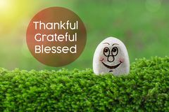 Thankful grateful blessed. The text thankful grateful blessed with stone smile happy face on green moss and sunshine light background royalty free stock photos