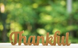 Thankful and grateful on forest background. Thankful and grateful on a shiny green forest background stock photography
