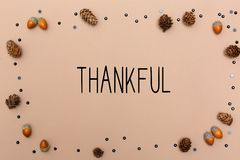 Thankful message with autumn theme. D background border royalty free stock images