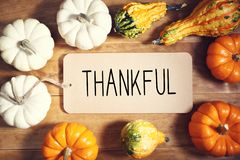 Thankful message with collection of pumpkins. On a wooden table stock images