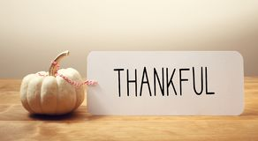 Thankful message with a small pumpkin. Thankful message with a white small pumpkin stock image