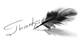 Thanks. Ink handwriting thanks or thank you with feather pen on white background Stock Images