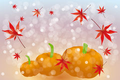 Thanks giving card with copy space. Thanks giving card template without text with pumpkins and maple leafs on rainbow background - eps 10 vector Royalty Free Stock Photography