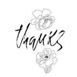 Thanks handwritten inscription. Hand drawn modern dry brush lettering. Thank you card. Vector illustration. Thanks handwritten inscription. Hand drawn modern Royalty Free Illustration