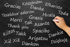 Thanks in various languages. Black board with word thanks in various languages Stock Photo