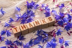 Thanks on the wooden cubes. Thanks written on the wooden cubes with blue flowers on white wood Royalty Free Stock Photo