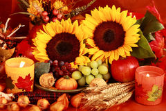 Thanksgiving. Still life and harvest or table decoration for Thanksgiving Royalty Free Stock Photos