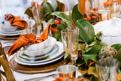 thanksgiving Imagem de Stock