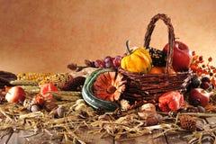 thanksgiving stockfotos