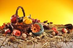thanksgiving lizenzfreie stockfotos