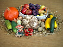 thanksgiving Immagini Stock Libere da Diritti