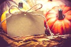 thanksgiving στοκ εικόνα