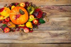 Thanksgiving arrangement with pumpkin, apples, pears, rowan berr Stock Image