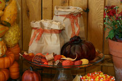 Thanksgiving Arrangement002 Royalty Free Stock Images