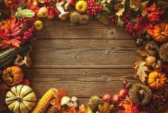 Thanksgiving autumn background Stock Image