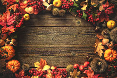 Thanksgiving autumn background Royalty Free Stock Photography