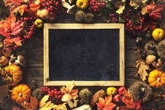Thanksgiving autumn background Royalty Free Stock Image