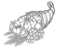 Thanksgiving autumn cornucopia festival emblem. Monochrome vintage engraving. Fresh organic vegetables, wheat and fruits sign isolated on white background Stock Images