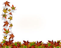 Thanksgiving Autumn Fall Leaves Stock Photography