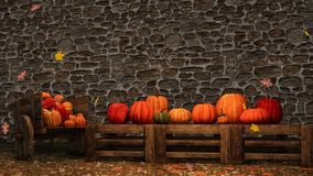 Thanksgiving autumn pumpkins stone wall background. Thanksgiving day scene on rustic market with colorful pumpkins and falling autumn leaves against rough