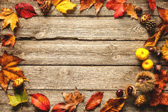 Thanksgiving autumnal background Royalty Free Stock Images