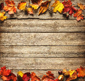 Thanksgiving autumnal background Royalty Free Stock Photography