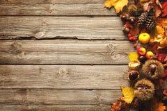 Thanksgiving autumnal background Stock Photo