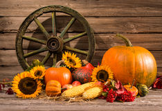 Thanksgiving. Autumnal still life with old wooden wheel Stock Photo