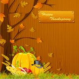 Thanksgiving Background Royalty Free Stock Image