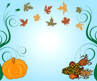 Thanksgiving Background Stock Image