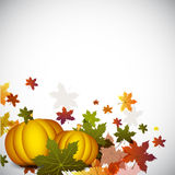 Thanksgiving background. Stock Images