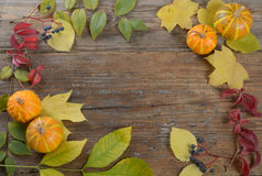 Thanksgiving background Royalty Free Stock Photo