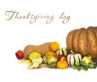 Thanksgiving background with Autumn fruits and vegetables. On white royalty free stock images