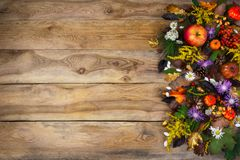 Thanksgiving background with autumn leaves, yellow and purple fl Royalty Free Stock Images