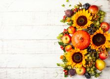 Thanksgiving background with autumn pumpkins, fruits and flowers. Thanksgiving background with autumn pumpkins, fruits and fall leaves on wooden table. Top view stock image