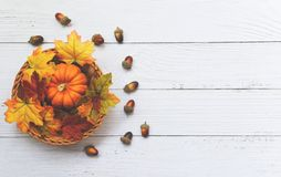 Free Thanksgiving Background Frame Autumn Leaf Decoration Festive On Wooden - Autumn Table Setting With Pumpkins On Basket On Wooden Royalty Free Stock Images - 161443799
