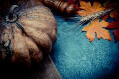 Thanksgiving background with fruit and vegetable. On wood in autumn season.  Copy space for text Stock Photography