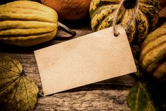 Thanksgiving background. Autumn and Fall harvest season royalty free stock photography