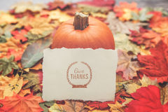 Thanksgiving Background. Thanksgiving Holiday Background with Leaves Stock Photos