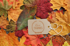 Thanksgiving Background. Thanksgiving holiday Background with leaves Stock Photography