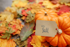 Thanksgiving Background. Thanksgiving holiday Background with leaves Stock Photo