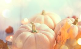 Thanksgiving background. Holiday scene. Wooden table, decorated with pumpkins, autumn leaves royalty free stock photos
