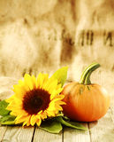 Thanksgiving background with large copyspace Stock Image
