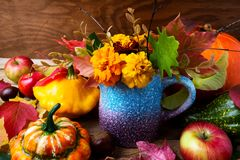 Thanksgiving background with marigold flowers, pumpkins and appl. Marigold flowers in blue vase, pumpkins and apples, close up. Thanksgiving or fall greeting Royalty Free Stock Photography